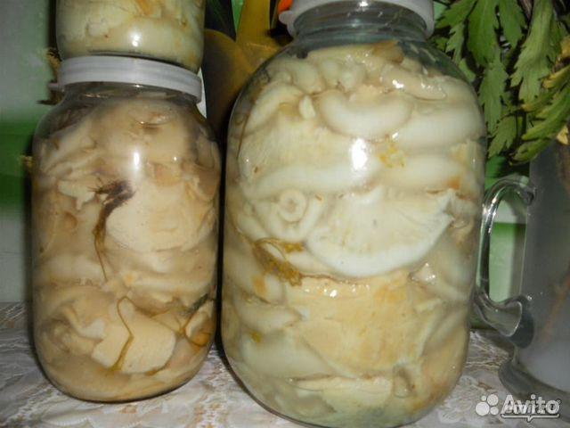 Маринованные грузди рецепт с фото пошагово
