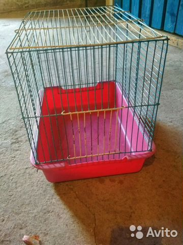 Cage for rats